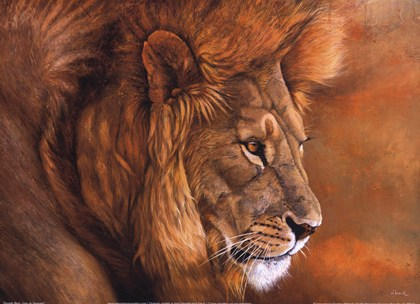 Dashing image within printable lion pictures