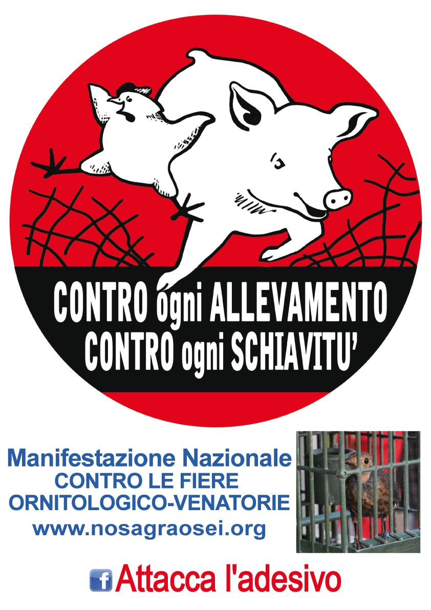 CONTRO OGNI FIERA ORNITOLOGICO-VENATORIA: NO SCHIAVITU'