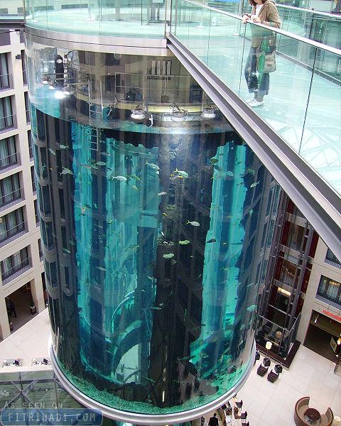 aquadom berlin germany largest cylinder aquarium