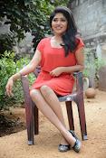 Samyuktha Hornad Glam pics-thumbnail-8