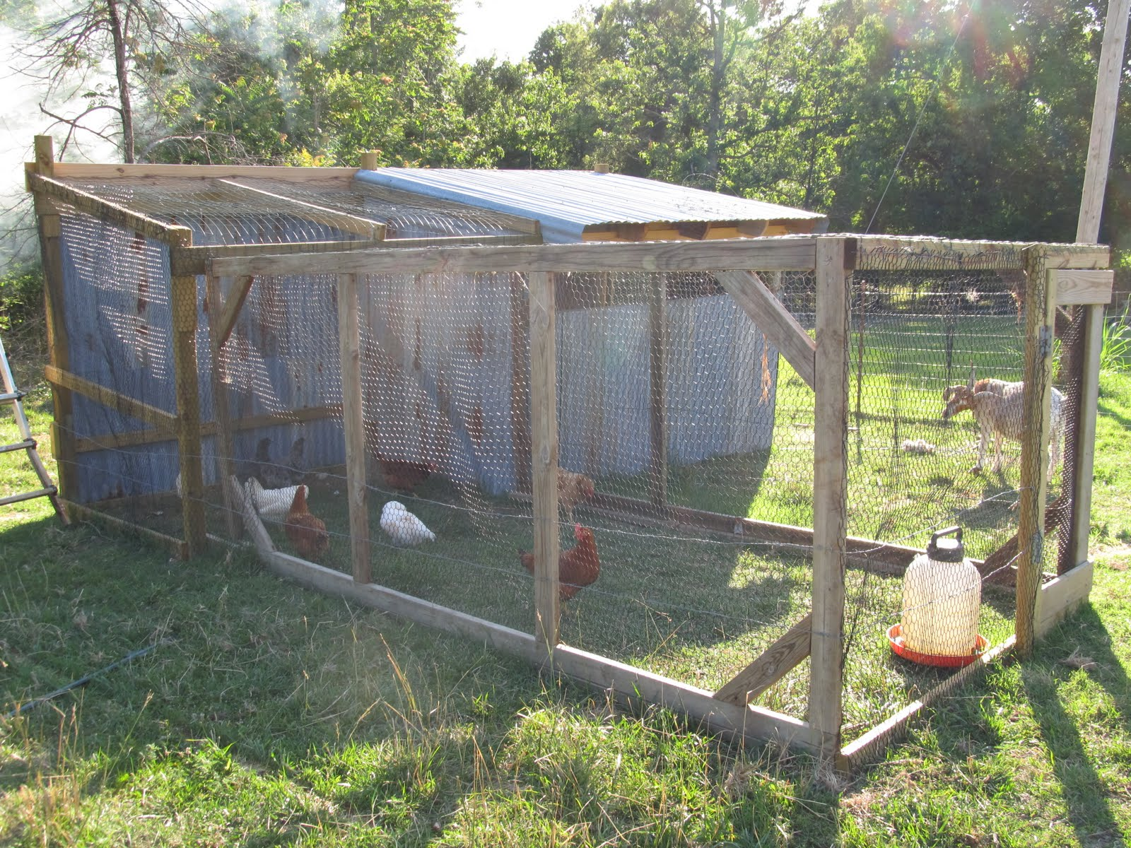 The Farm of Hale: Chicken Coop