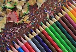 Vamos colorir.