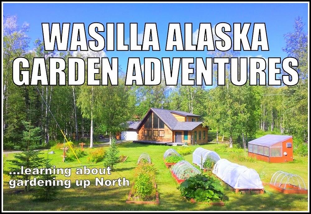 Wasilla Alaska Garden Adventures