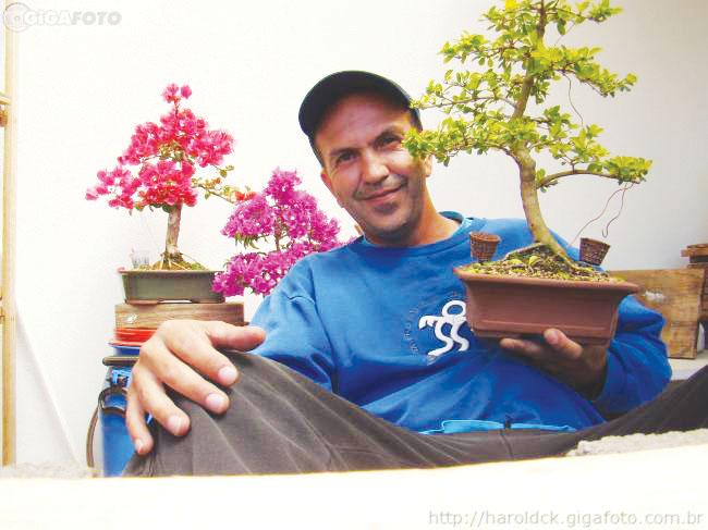 Emp rio de not cias santa rita do sapuca haroldo e sua - Cultivo de bonsai ...