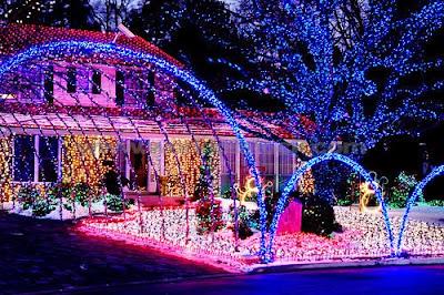 decoraci%C3%B3n+con+luces+de+navidad+sorprendentes Imagenes de luces navideñas.