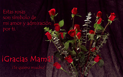 Rosas rojas con mensaje Día de las Madres (10 de mayo)