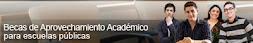 Becas de Aprovechamiento Académico