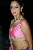 Asmita sood sizzling pics-thumbnail-7