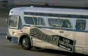 Hız Tuzağı Otobüsü Yeni