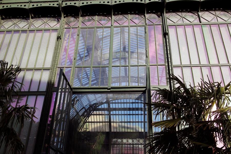 PARIS - Jardin des Plantes - Grandes Serres - chavanitas