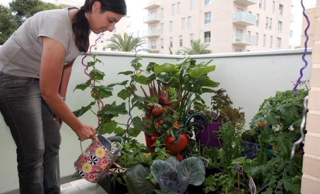 Huertos urbanos bah a de c diz el movimiento windowfarm for Cultivar vegetales en casa