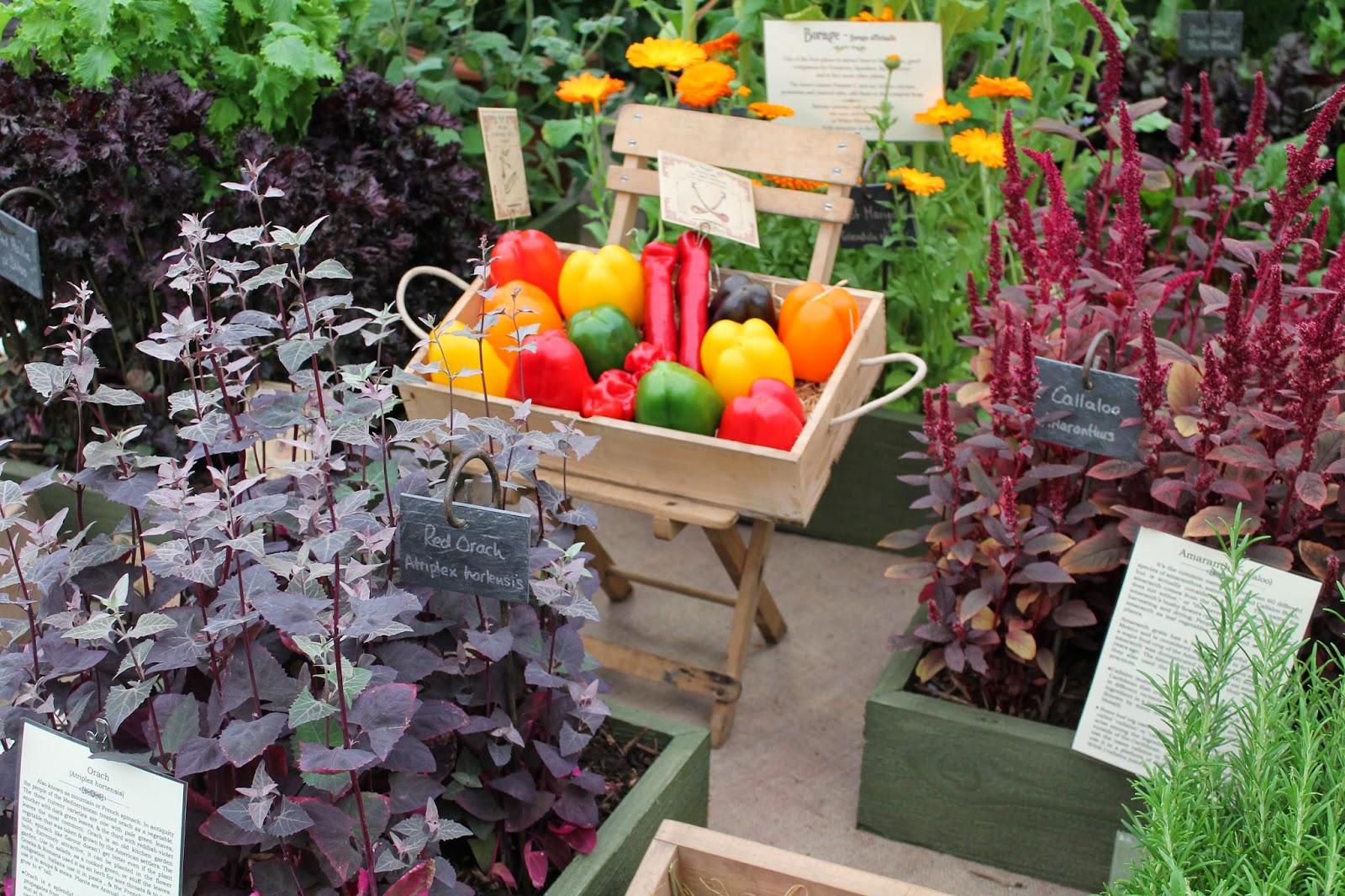 BBC Good Food Show Summer - NEC Birmingham - Gardeners World