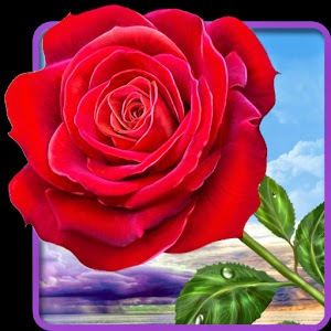 Rose Magic Touch Live Wallpaper Is Free But Contains Ads In Settings Of The Revenue From Advertising Will Help Us To Create New Attractive