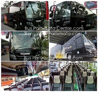 Rental Bus Pariwisata: Bus Pariwisata WARGA BARU PW