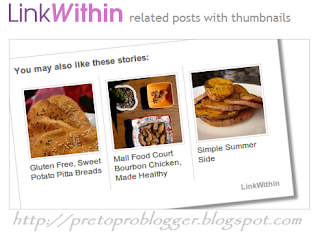 How To Add Related Post Widget By LinkWithin in Your Blog