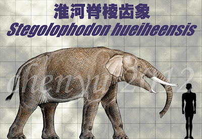 Stegolophodon