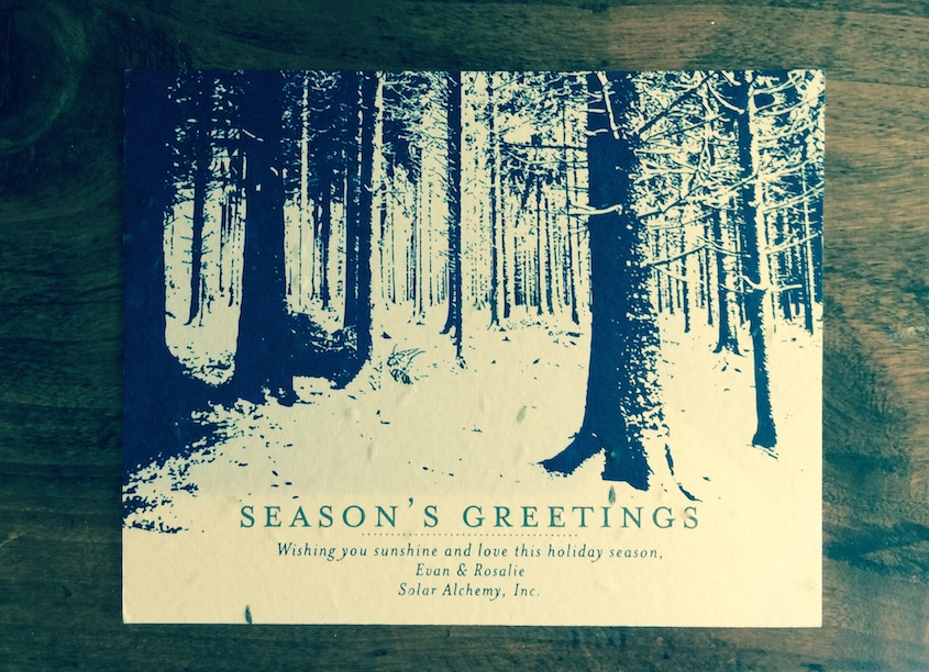 Winter Forest Greeting Cards