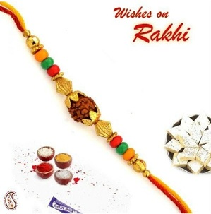 Aapano Rajasthan Rudhraksh And Coloured Beads Rakhi with Free Tilak, Rakhi Card & Chocolate Starts from Rs.101 (Free Shipping)