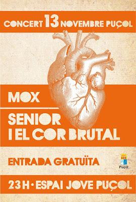 concert, Espai Jove, Puçol, Mox, Concert, Senior,