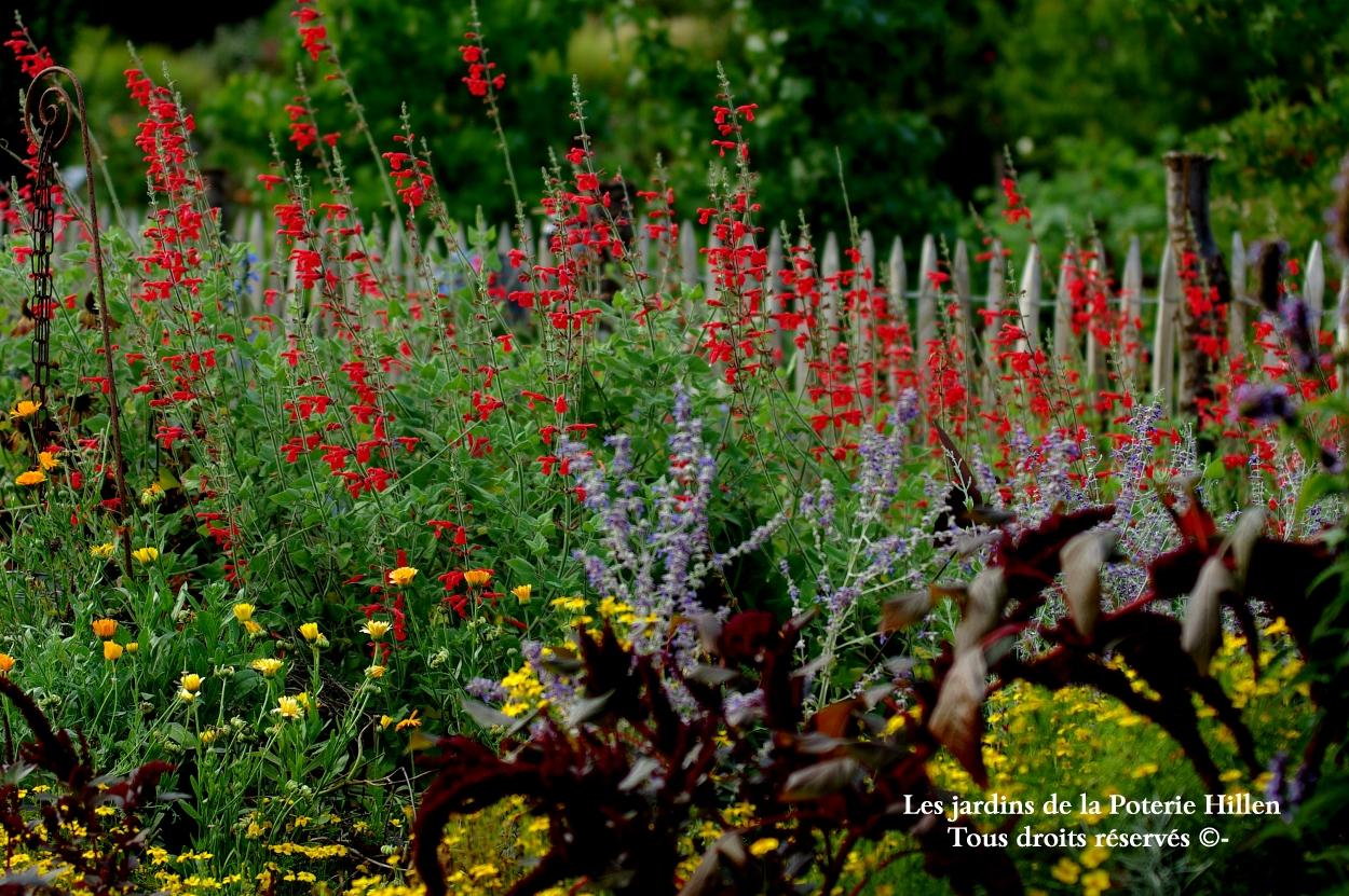 Les jardins de la poterie hillen for Jardin ouvert ce week end