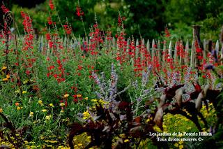 Les jardins de la Poterie Hillen à Thermes-Magnoac classé jardin remarquable
