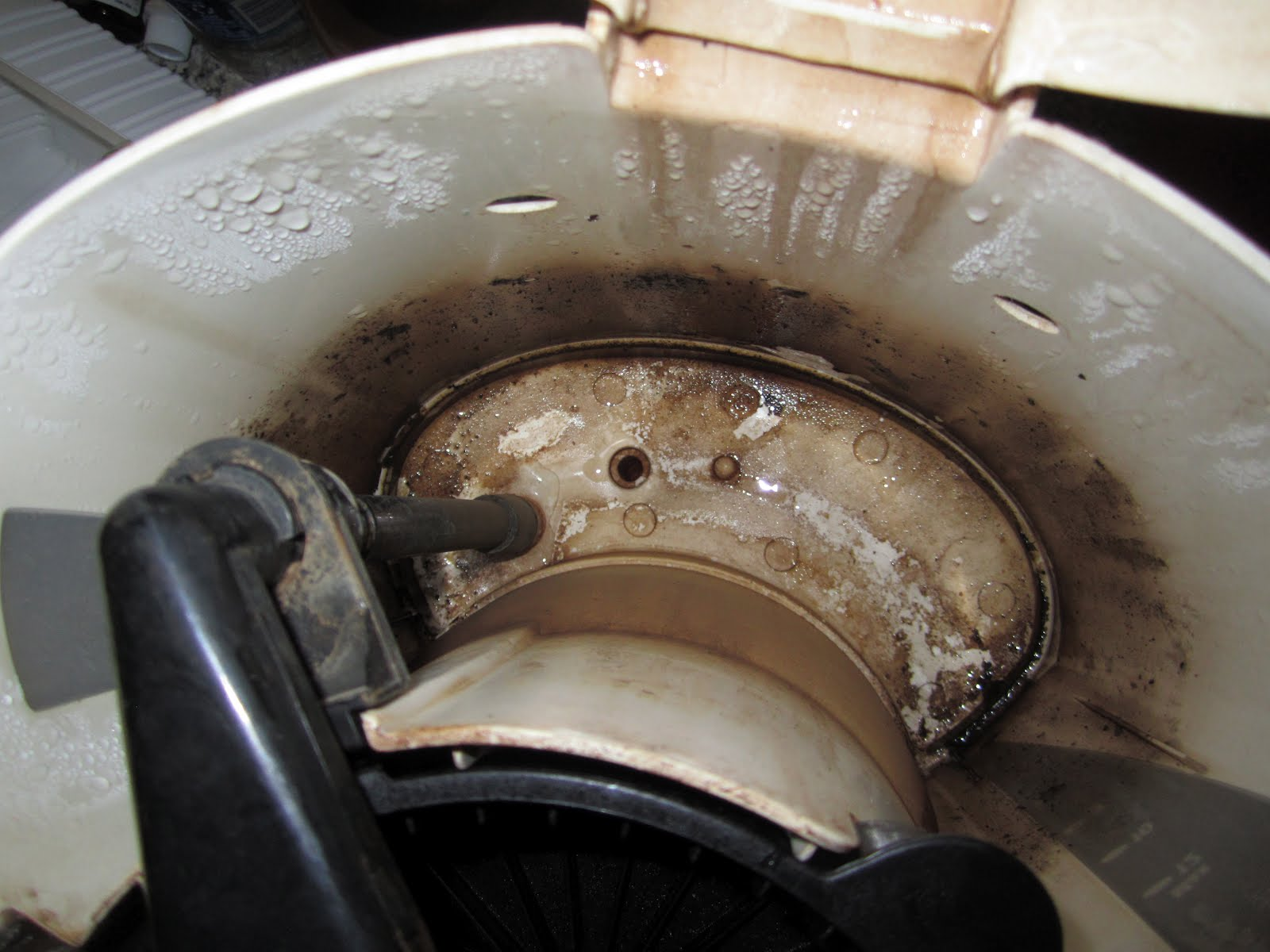 Coffee Maker Mold : Is Your Coffee Maker Really Clean? : Healthy Holistic Living