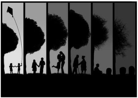 El árbol y la vida
