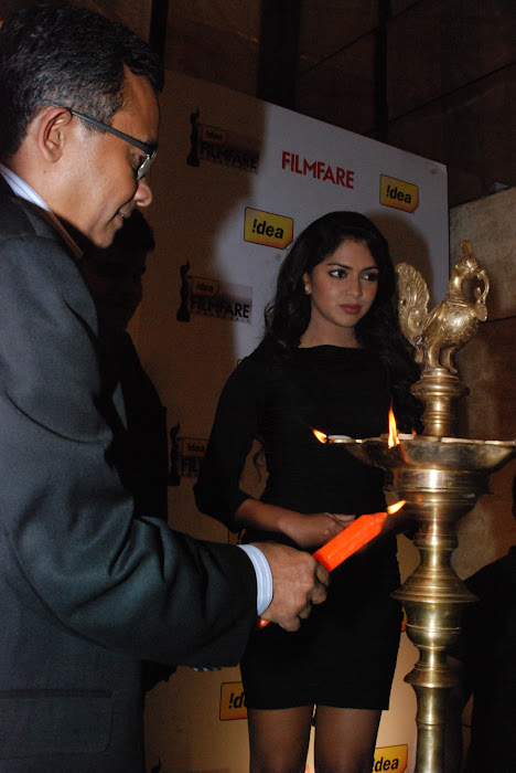 amala paul at 59th idea filmfare awards press meet glamour  images