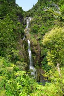 Paseos por Región Auckland