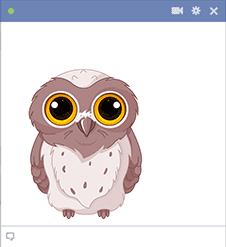 Wise owl - Facebook sticker