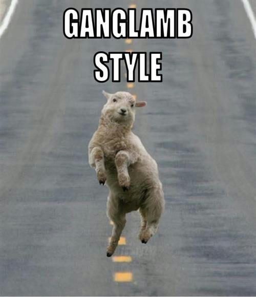 A Lamb doing Gangnam Style