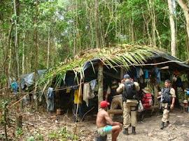 Trabalho escravo em Alagoas