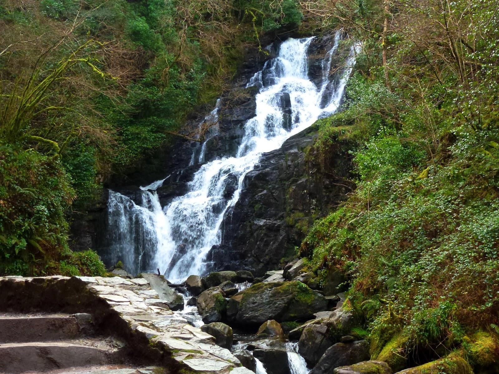 Related image with killarney national park ireland pinterest