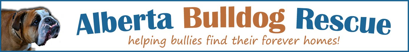 Alberta Bulldog Rescue