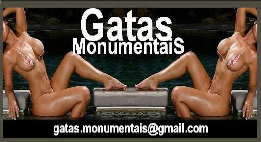 Gatas Monumentais