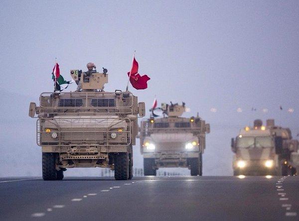 Conflicto en Yemen - Página 21 UAE%2BArmed%2BForces%2Breturn%2Bfrom%2BYemen%2B10