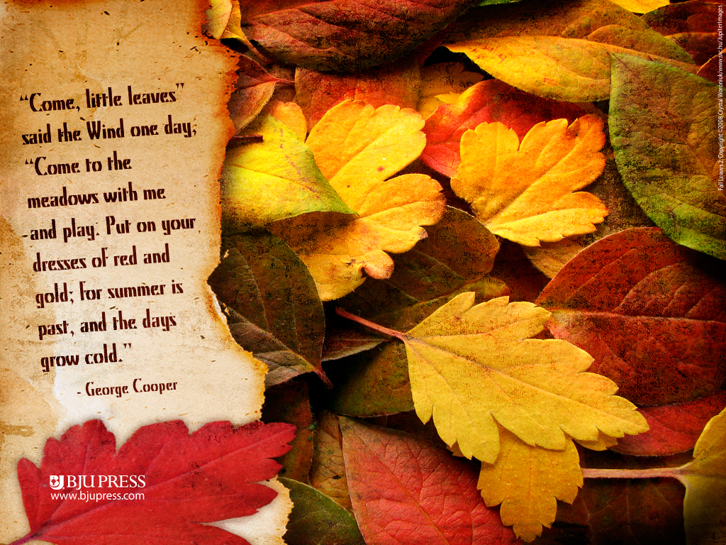 Fall Leaves Quotes. QuotesGram
