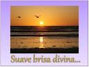 CD Suave Brisa Divina...