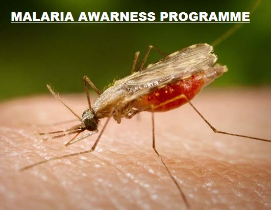 Malaria Awarness