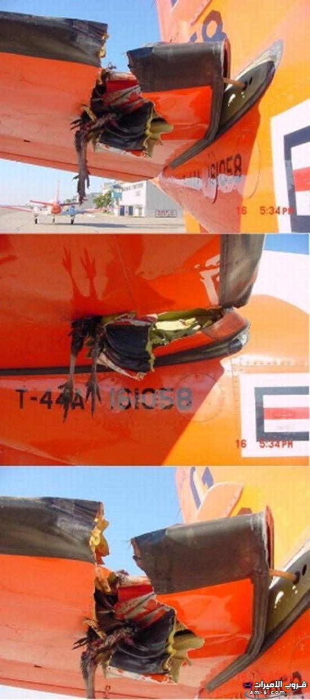 حوادث الجو 9.jpg