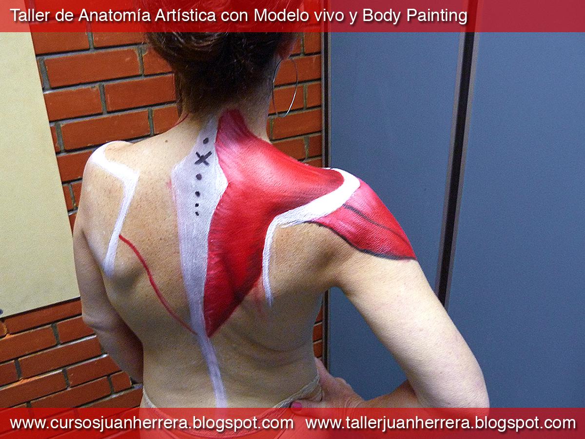 Taller de Arte Juan Herrera: Taller de Anatomía Artística con Modelo ...