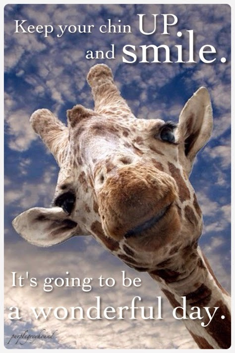 """Keep your chin up and smile. It's going to be a wonderful day."" Picture of a giraffe's head smiling. purplegreyhound"