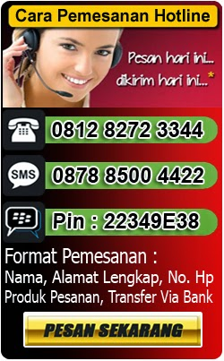 http://asokaherball.blogspot.com/2014/03/sistem-pemesanan.html