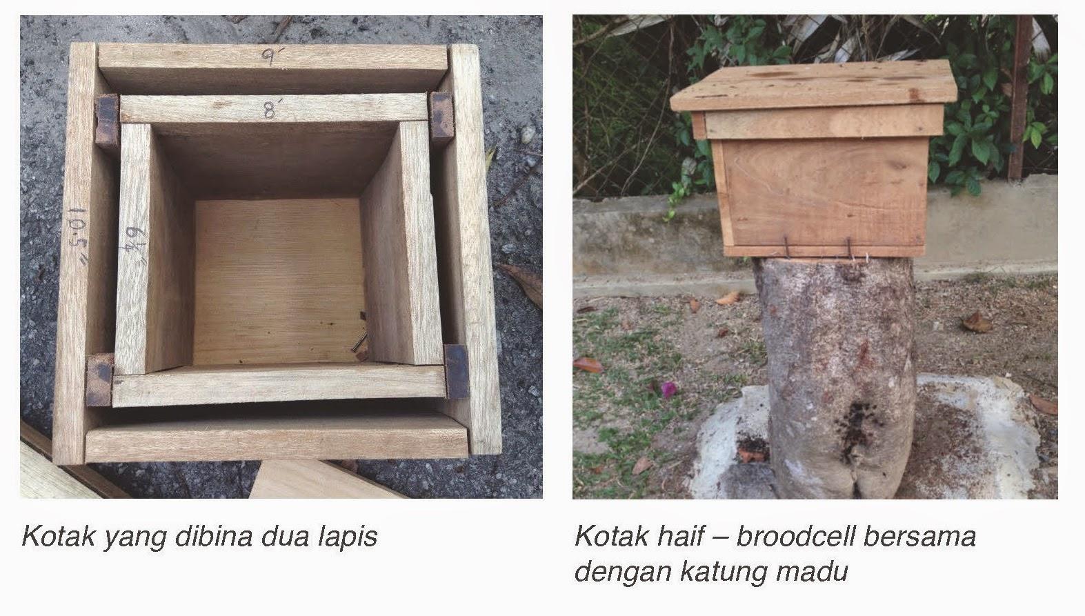 Kotak Lebah Kelulut MARDI