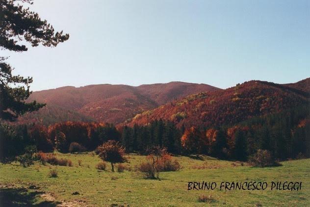 L'alta valle del Neto.