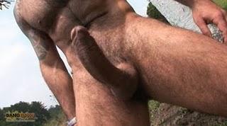 Hombres chupando grandes escrotos peludos