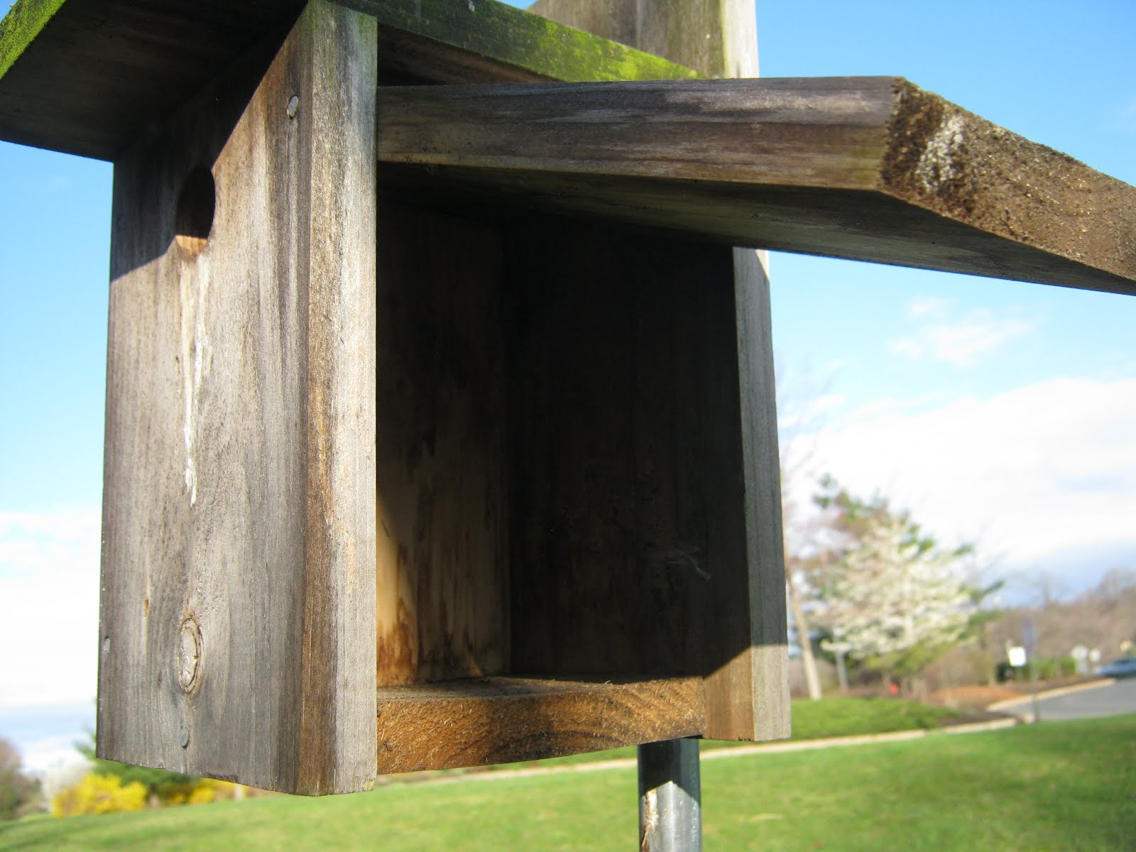 Chickadee nest box