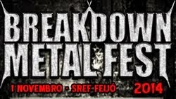 BREAKDOWN METAL FEST 2014