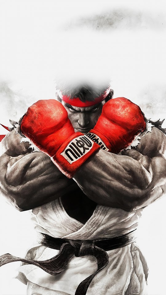 Street Fighter Illustration Game  Galaxy Note HD Wallpaper