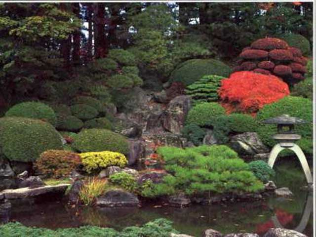 Small japanese garden for Japanese garden bushes